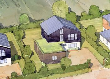 Thumbnail 4 bed detached house for sale in Alum Bay New Road, Totland Bay