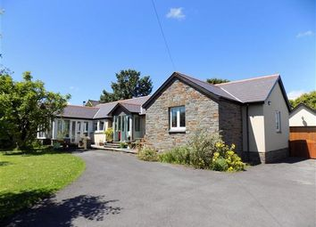 Thumbnail 4 bed bungalow for sale in Maes Y Llandre, Gower Villa Lane, Clunderwen