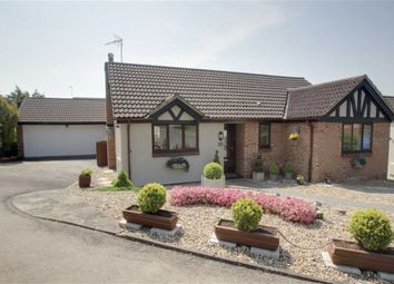 Thumbnail 2 bed detached bungalow for sale in Careys Croft, Berkhamsted, Herts
