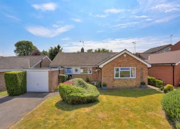 Thumbnail 4 bed bungalow for sale in Tuffnells Way, Harpenden