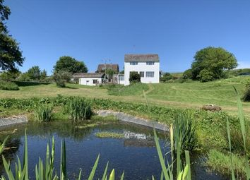 Thumbnail 5 bedroom detached house for sale in Beaminster