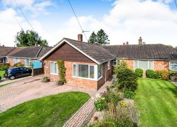Thumbnail 3 bed bungalow for sale in South Acre, South Harting, Petersfield, .