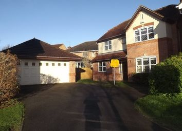 Thumbnail 4 bed detached house to rent in Littleover, Derby