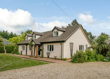 Thumbnail 5 bed property for sale in Norwich Road, Wayford, Norwich