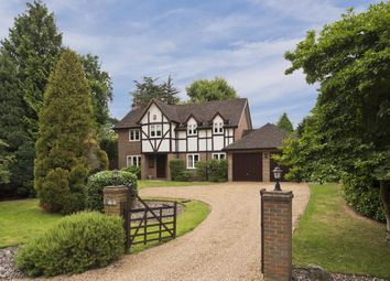 Thumbnail 4 bed detached house to rent in Sandy Drive, Cobham