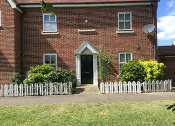 Thumbnail 4 bed property to rent in Elmstead Road, Colchester
