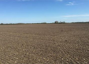 Thumbnail Land for sale in Agricultural Land At Leconfield, Beverley, East Riding Of Yorkshire