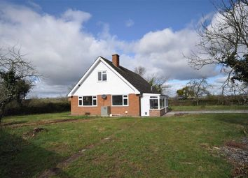 Thumbnail 4 bedroom detached house to rent in Castle Frome, Ledbury