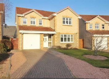 Thumbnail 4 bedroom detached house for sale in 10, Borthwick Place, Balmullo, Fife