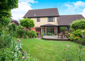 Thumbnail 4 bed detached house for sale in Webbs Close, Combs, Stowmarket