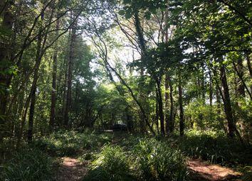 Thumbnail Land for sale in Broxmead Lane, Bolney, Haywards Heath