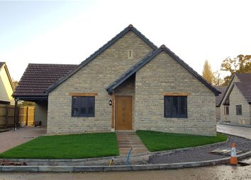 Thumbnail 3 bed detached bungalow for sale in Long Orchard Close, Martock, Somerset
