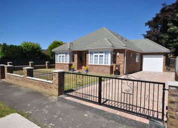 Thumbnail 4 bed detached bungalow for sale in Westfield, Woking, Surrey