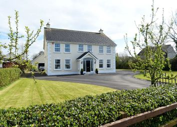 Thumbnail 4 bedroom detached house for sale in Diamond Lane, Aghalee, Craigavon