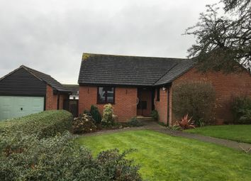 Thumbnail 2 bed detached bungalow to rent in Brookfield Drive, Colyton