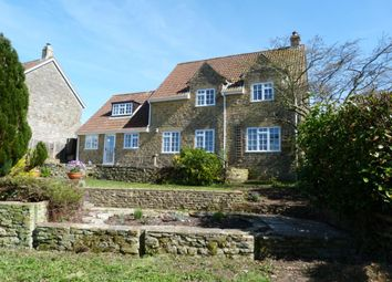 Thumbnail 3 bed detached house to rent in Pine Close, Corscombe, Dorchester