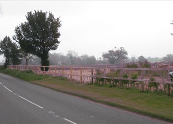 Thumbnail Land to let in Former Nursery Site, Hempnall Road (B1527), Morningthorpe, Norwich
