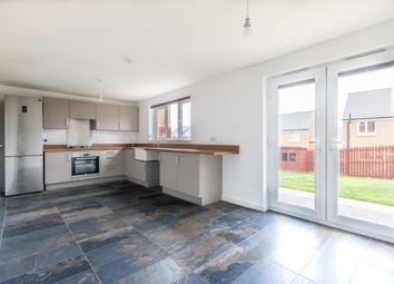 Thumbnail 4 bed detached house to rent in Tobias Street, Edinburgh
