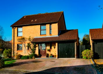 Thumbnail 4 bed detached house for sale in Nutmeg Close, Earley, Reading