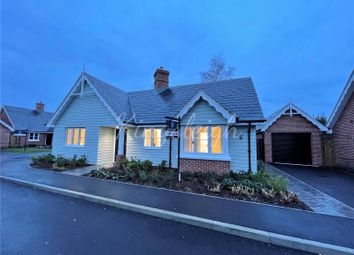 Thumbnail 3 bed bungalow for sale in Upper Street, Stratford St. Mary, Colchester