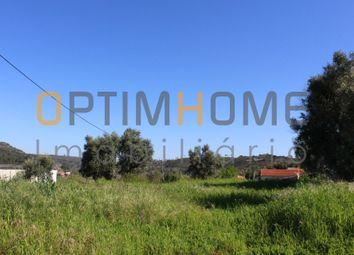 Thumbnail Land for sale in Fungalvaz, 2350 Torres Novas, Portugal