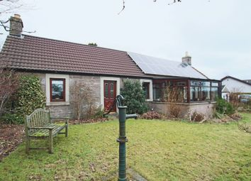 Thumbnail 3 bed cottage for sale in Park Road, Letham, Forfar