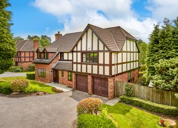 Thumbnail 5 bed detached house to rent in Caerleon Close, Hindhead