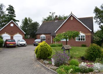 Thumbnail 3 bed bungalow for sale in Winfrey Close, Long Sutton