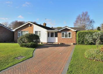 Thumbnail 4 bedroom detached bungalow for sale in Braemar Drive, Highcliffe, Christchurch