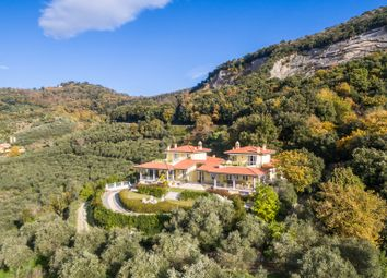 Thumbnail 19 bed villa for sale in Massarosa, Lucca, Tuscany, Italy