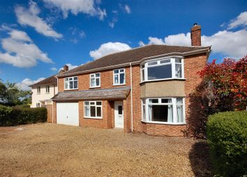 Thumbnail 5 bedroom detached house to rent in Queen Ediths Way, Cherry Hinton, Cambridge