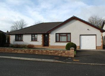 Thumbnail 4 bed bungalow to rent in Llys Y Ferin, Nantgaredig, Carmarthen