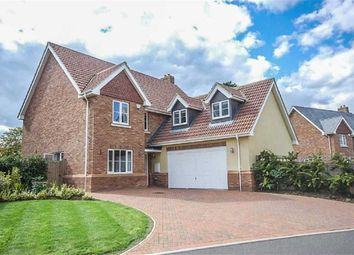Thumbnail 5 bedroom detached house for sale in Hammarsfield Close, Standon, Hertfordshire