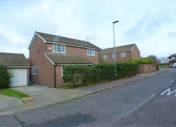 Thumbnail 4 bedroom detached house to rent in Highmead Avenue, Newton, Swansea