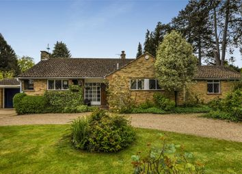 Thumbnail 3 bed detached bungalow for sale in Halifax Road, Heronsgate, Rickmansworth, Hertfordshire