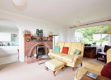 Thumbnail 4 bed bungalow for sale in Pelham Road, Ventnor, Isle Of Wight
