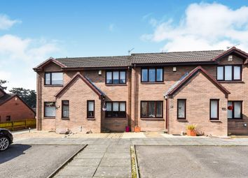 Thumbnail 1 bedroom terraced house for sale in Locher Avenue, Houston, Johnstone