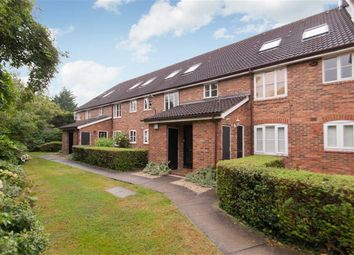 Thumbnail 1 bed semi-detached house to rent in Godolphin Place, London