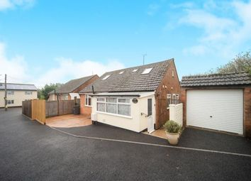 Thumbnail 4 bed bungalow for sale in Newton Poppleford, Sidmouth, Devon