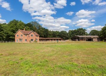 Thumbnail Property for sale in Doctors Hill, Hevingham, Norwich, Norfolk