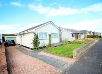 Thumbnail 2 bed detached bungalow for sale in 23 Glebe Place, Kinghorn, Burntisland, Fife