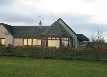Thumbnail 4 bed detached house to rent in Oslin Croftsmuir, Carmyllie, Arbroath