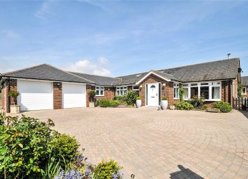 Thumbnail 4 bed bungalow for sale in Field Close, Walberton, Arundel, West Sussex