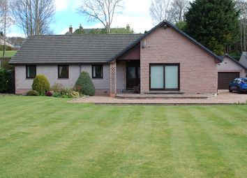 Thumbnail 4 bed detached bungalow for sale in Victoria Street, Blairgowrie