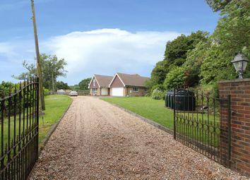Thumbnail 4 bed detached bungalow for sale in Newington, Folkestone, Kent