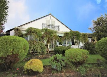 Thumbnail 4 bed detached bungalow to rent in Sycamore Close, Paignton