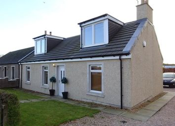 Thumbnail 4 bed semi-detached house to rent in Kilncadzow Road, Carluke