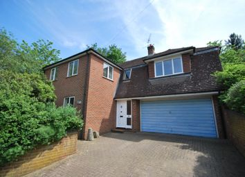 Thumbnail 4 bed detached house to rent in Red Lion Lane, Farnham