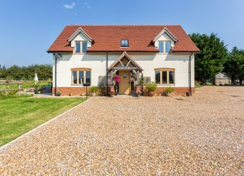 Thumbnail 3 bedroom detached house to rent in Pannells Ash, Hogswood Road, Ifold, Loxwood, Billingshurst