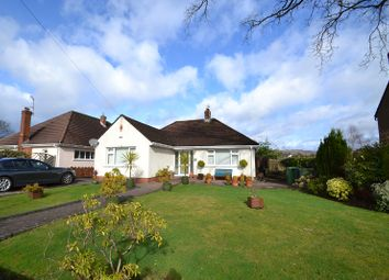 Thumbnail 2 bed detached bungalow to rent in Heol Iscoed, Rhiwbina, Cardiff.